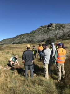 All stakeholders on-site at the peatlands